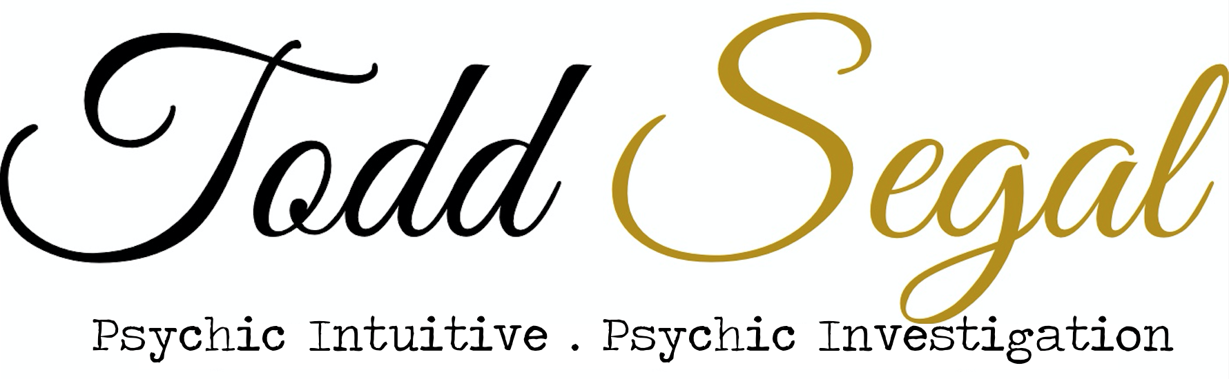 Todd Segal Intuitive Services